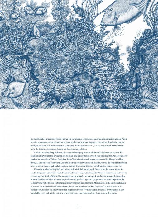 Ringel Seepferdchen_Seite_06